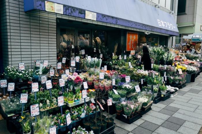 Khởi nghiệp hoa tươi: để mở shop hoa tươi thành công, cần tránh những bài học thất bại của người đi trước