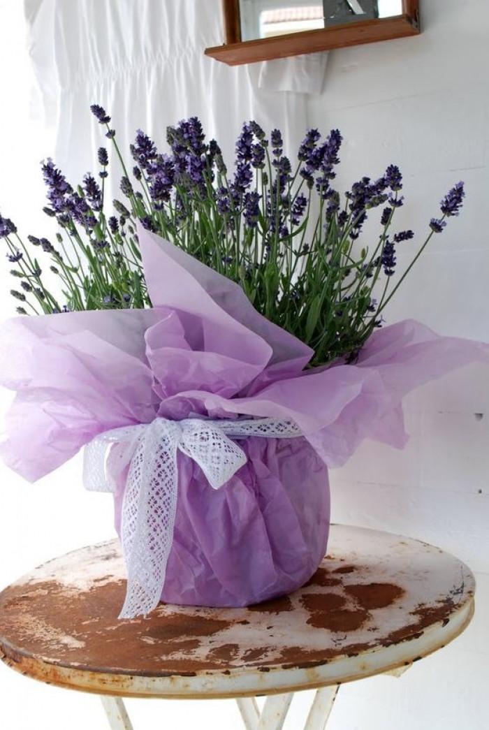 Giấy gói chậu hoa tết, giấy gói chậu hoa