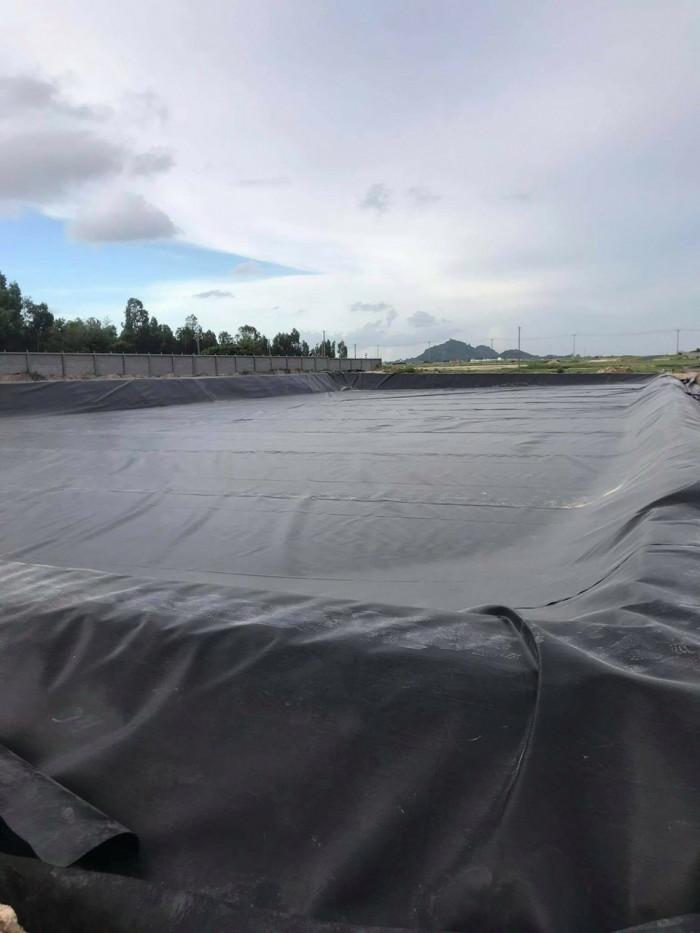 Bạt lót hồ cá Hà Nội