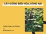 Bán cây giống tại Biên Hòa, Đồng Nai - Danh sách vườn ươm cây giống Đông Nam Bộ Đồng Nai