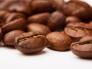 Tìm hiểu về các loại hạt cà phê, vị của các loại cà phê, cách nhận biết các loại hạt cà phê