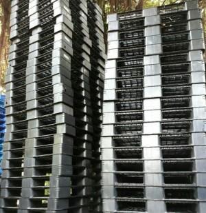 Đại lý số 1 Pallet nhựa thanh lý tại Bình Dương