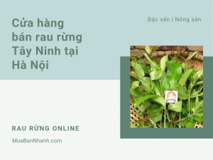 Cửa hàng bán rau rừng Tây Ninh ở Hà Nội - Mua rau rừng online trên MuaBanNhanh