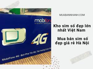 Kho sim số đẹp lớn nhất Việt Nam - Mua bán sim số đẹp giá rẻ Hà Nội