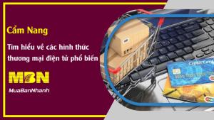 Các hình thức, mô hình kinh doanh thương mại điện tử ứng dụng tại Việt Nam