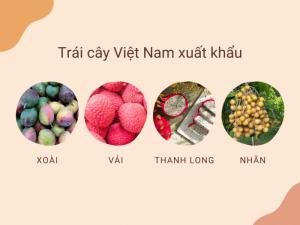 Các loại trái cây Việt Nam xuất khẩu sang Úc, Nhật, Mỹ, Trung Quốc