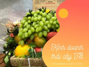 Kinh doanh hoa quả Tết - giỏ hoa quả Tết, mâm hoa quả thắp hương, lẵng hoa quả Tết, hộp hoa quả biếu Tết
