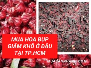 Mua hoa bụp giấm khô ở đâu tại TPHCM