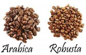 Top 10 loại hạt cà phê rang xay dân ghiền cafe chọn mua dùng với máy pha cà phê hạt gia đình