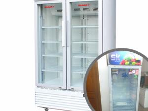 Top 10 tủ đông đứng mặt kính trưng bày hàng đông lạnh - dòng tủ đông không đóng tuyết, dàn đồng công nghiệp từ 5 - 6 ngăn