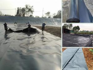 Bán màng chống thấm HDPE Solmax Thái Lan, Sunco Việt Nam, Huitex Đài Loan - nhận thi công với hơn 10 năm kinh nghiệm